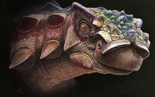 """Con khủng long """"full giáp"""" mới được tìm thấy này đã tiết lộ một sự thật rất thú vị"""