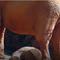"""Bất kể voi, sư tử hay mèo... tất cả các loài vật đều quỳ gối trước con số 12 """"thần thánh"""""""