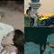 """Đầu tư khỏi chê nhưng các MV này đều khiến người xem tròn mắt vì những """"hạt sạn"""" khó hiểu"""
