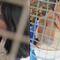 Chỉ với vợt cầu lông, học sinh đã tạo ra những kiểu ảnh sống ảo chất phát ngất, đăng lên có ngay nghìn like