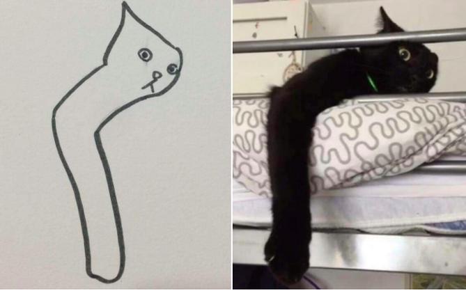 Những bức tranh vẽ mèo xấu không thể tả nhưng khi so với bản gốc, bạn sẽ phải gật đầu lia lịa