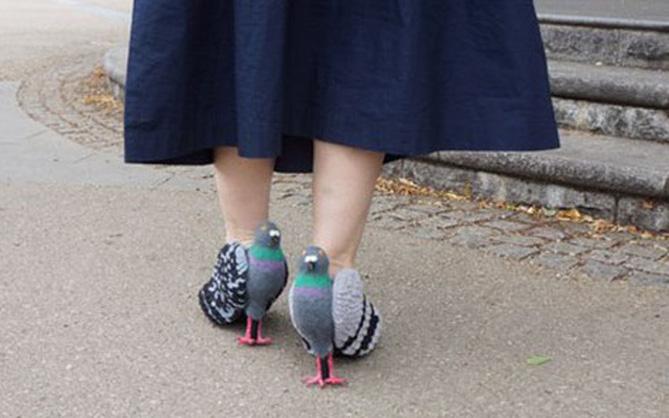 Đôi giày chim bồ câu khiến nhiều người dụi mắt nhìn lại