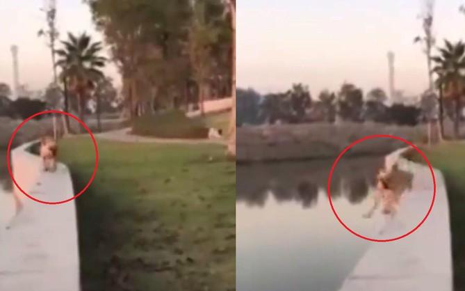 Clip: Vừa dạo bờ kè vừa nhìn crush, chú boss ngã lộn cổ xuống sông