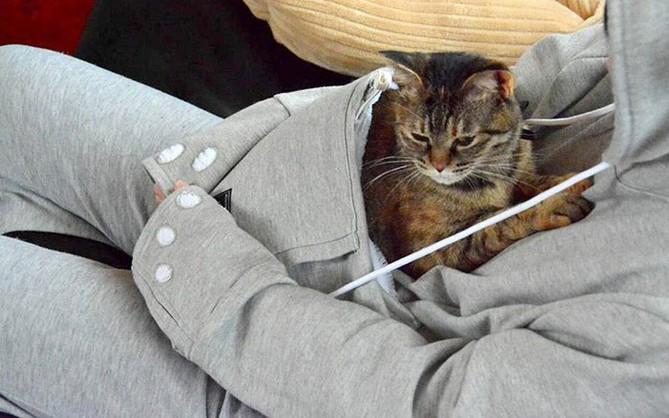 Trời lạnh thế này, có boss ngoan ngoãn nằm ở bụng sưởi ấm thì còn gì tuyệt bằng