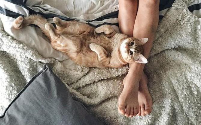 Nhờ có sản phẩm này, chân bạn sẽ không còn đông cứng mỗi sáng ngày đông