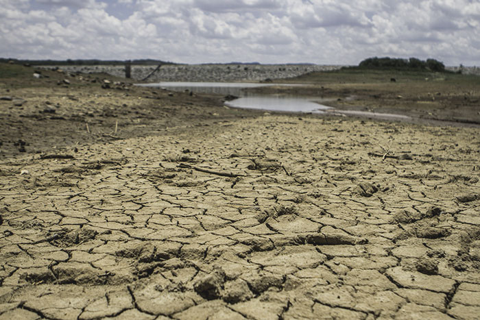 Đừng có chê chị Ai là triệu phú, thế bạn đã biết El Nino là gì chưa? - Ảnh 1.