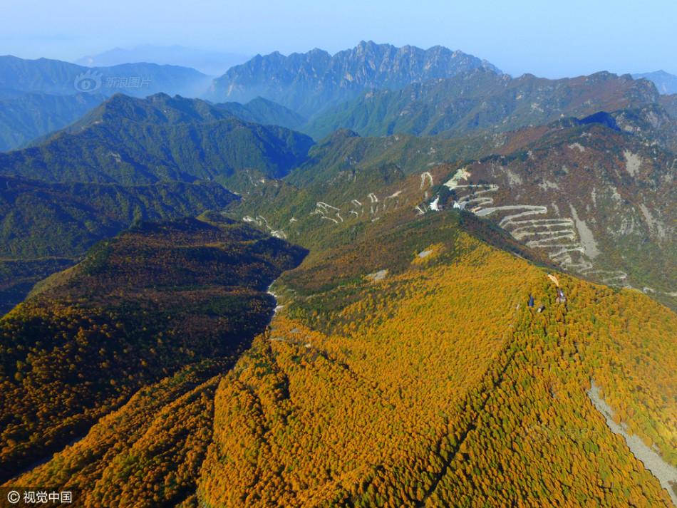 Con đường lắt léo nhất Trung Quốc: Thách bạn đi hết 72 khúc ngoặt này mà không chóng mặt - Ảnh 2.