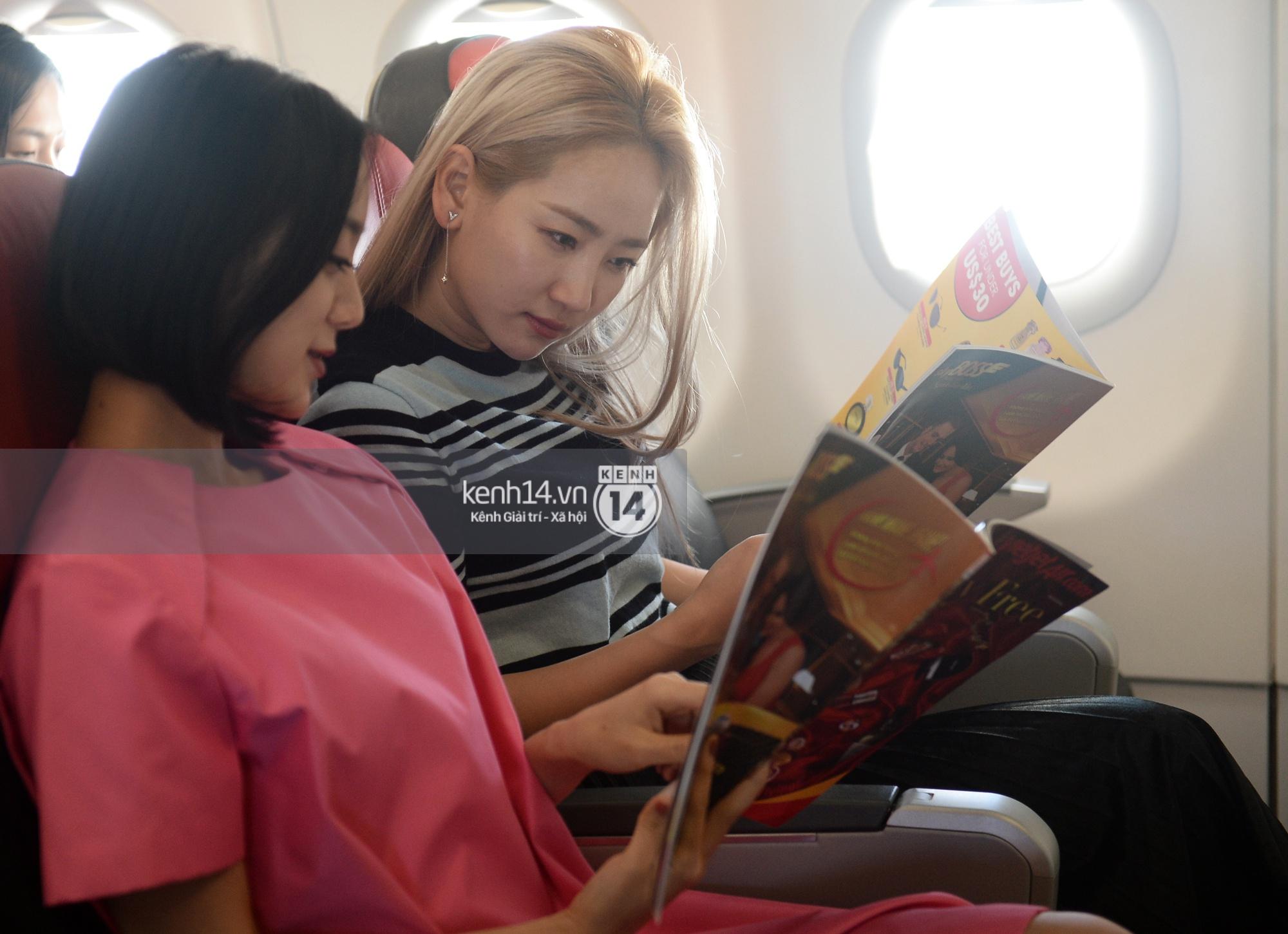 Wonder Girls bay từ Hàn Quốc sang Hà Nội rồi mới vào TP.HCM - Ảnh 1.