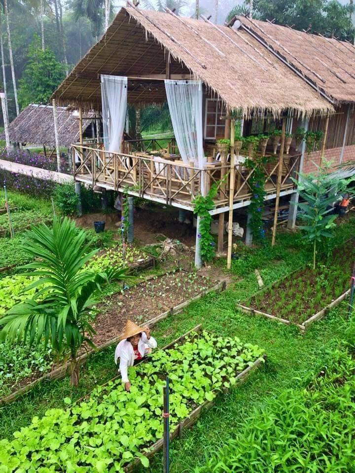 Ngôi nhà giữa vườn rau này đang được cư dân mạng Việt share điên đảo! - Ảnh 2.