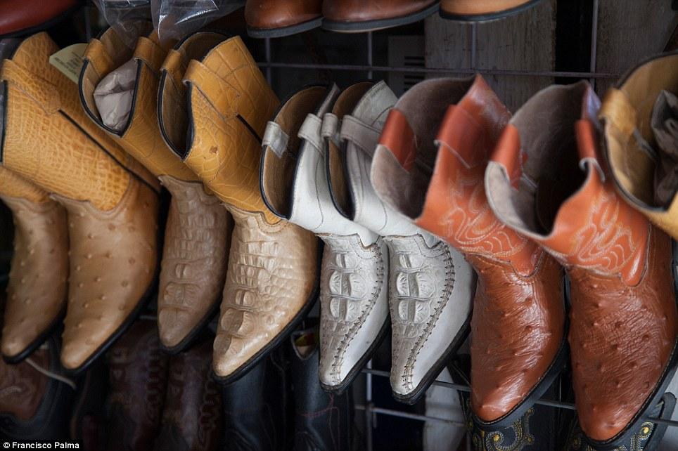 Đằng sau những đôi giày da thời thượng là cả một quá trình lột da cá sấu sống rùng rợn - Ảnh 13.