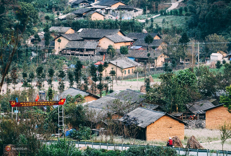 Ngắm mùa hoa tam giác mạch đẹp mê mải về ở Hà Giang - Ảnh 15.