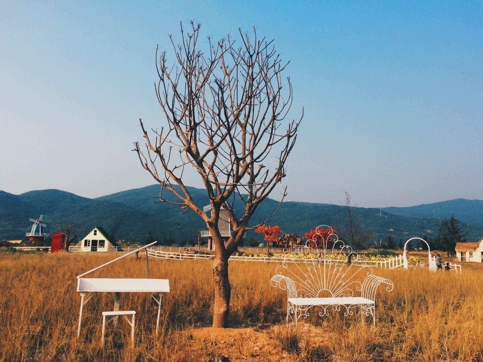 Giới trẻ Đà Nẵng sắp có thêm điểm chụp ảnh mới: Một phim trường đẹp như châu Âu - Ảnh 6.