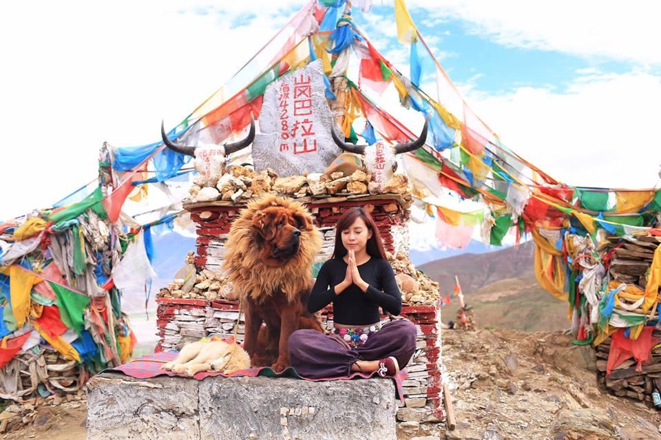 Tập Yoga tại tất cả mọi nơi mình đi qua - cô gái người Việt này đang truyền cảm hứng cho rất nhiều người! - Ảnh 10.