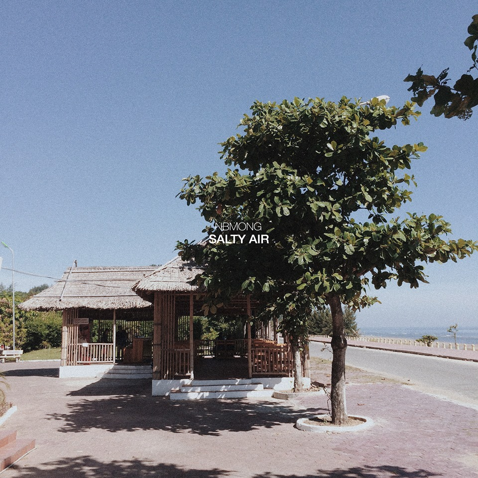Đẹp mê hoặc như biển Thiên Cầm (Hà Tĩnh): Thêm một địa điểm mà hè này bạn phải đi! - Ảnh 18.