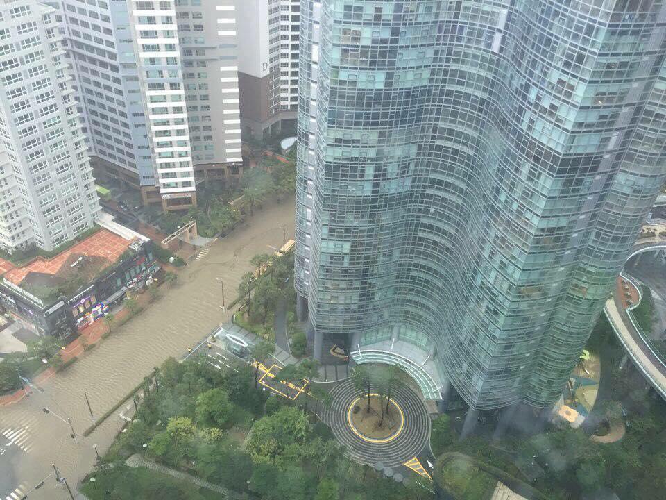 Cảnh tượng ngập lụt, đổ nát kinh hoàng sau bão tại siêu đô thị Busan của Hàn Quốc - Ảnh 5.