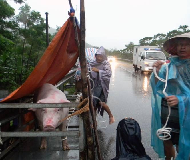 Chùm ảnh: Những hình ảnh nhói lòng về mưa lũ kinh hoàng ở miền Trung - Ảnh 17.