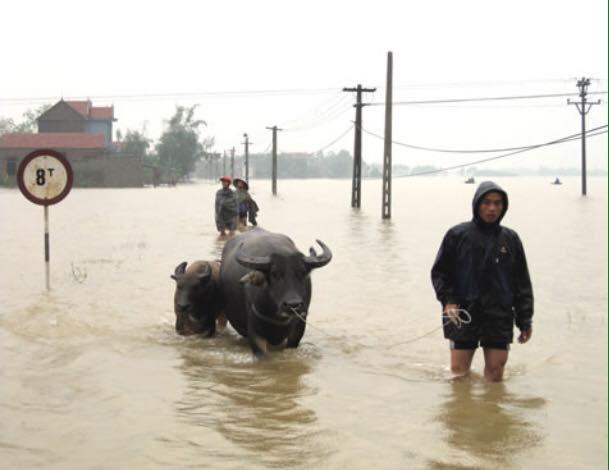 Chùm ảnh: Những hình ảnh nhói lòng về mưa lũ kinh hoàng ở miền Trung - Ảnh 18.