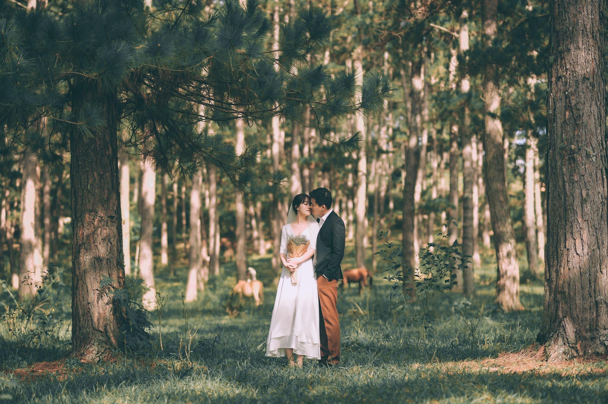 Trọn bộ ảnh cưới giản dị nhưng ngập tràn hạnh phúc của MC Trần Ngọc và 9x xinh đẹp - Ảnh 1.