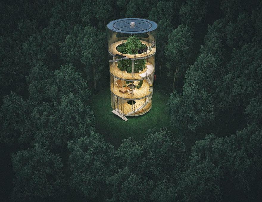 Nhà kính ôm lấy cây đẹp rụng rời giữa rừng xanh sâu thẳm - Ảnh 1.