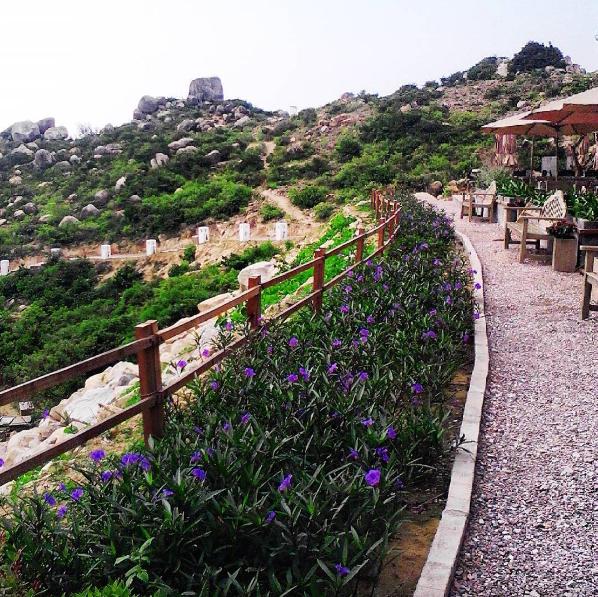 Có gì ở khu dã ngoại Trung Lương: Điểm đến được check in nhiều nhất Bình Định hè này - Ảnh 1.