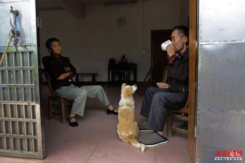 Khung cảnh hoang tàn ở ngôi làng ung thư nổi tiếng Trung Quốc khiến nhiều người không khỏi rùng mình - Ảnh 10.