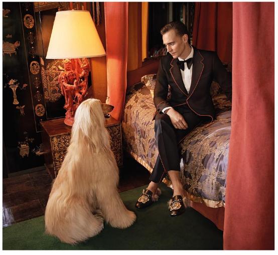 Sử dụng lông kangaroo để lót giày trong bộ sưu tập mới, Gucci bị chỉ trích dữ dội - Ảnh 4.