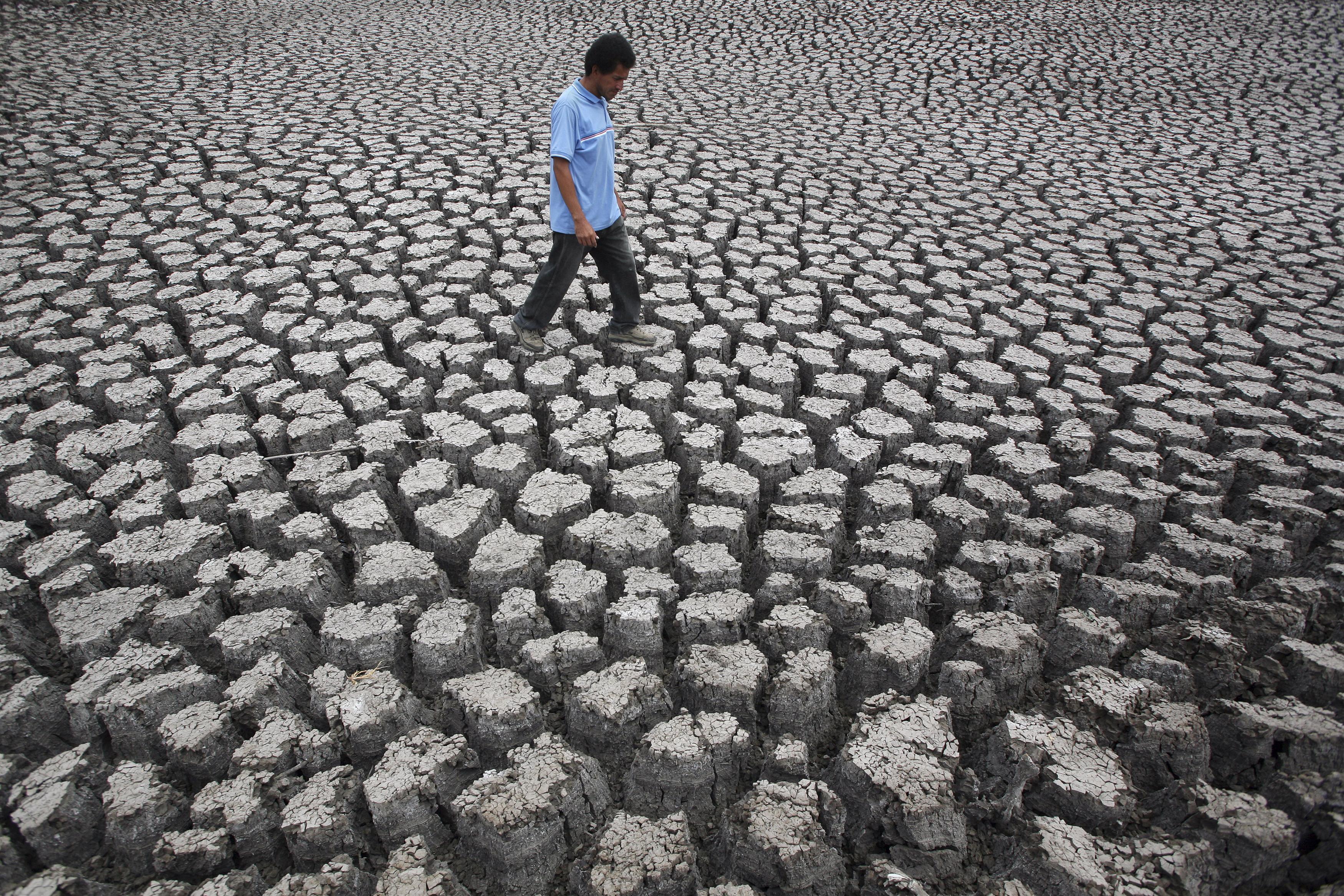 Đừng có chê chị Ai là triệu phú, thế bạn đã biết El Nino là gì chưa? - Ảnh 2.