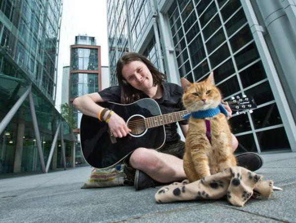 Cứu rỗi chàng nghệ sĩ nghèo vào thời điểm khốn khó nhất, chú mèo vàng trở thành nguồn cảm hứng của cả thế giới - Ảnh 2.