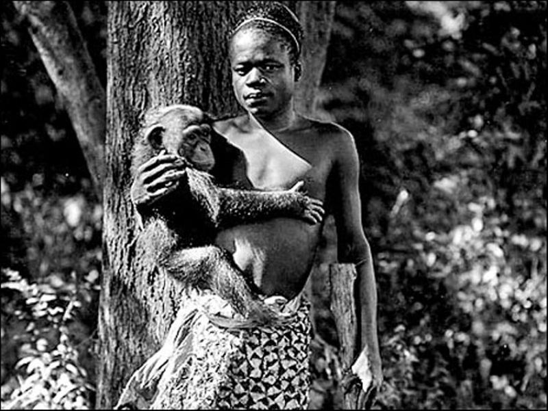 Bức ảnh bé gái châu Phi đứng trong chuồng: Câu chuyện đau lòng về những vườn thú người tại châu Âu - Ảnh 4.