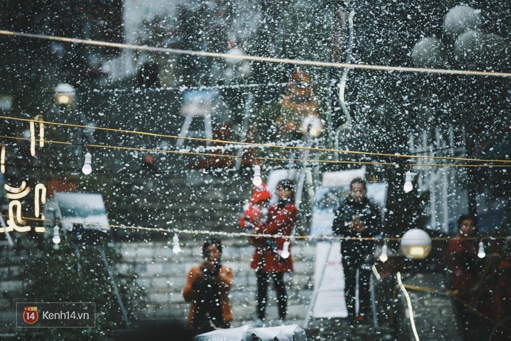 Có ai vừa tận hưởng Giáng sinh tại Lễ hội Tuyết lớn nhất Sapa 2016 không? - Ảnh 2.