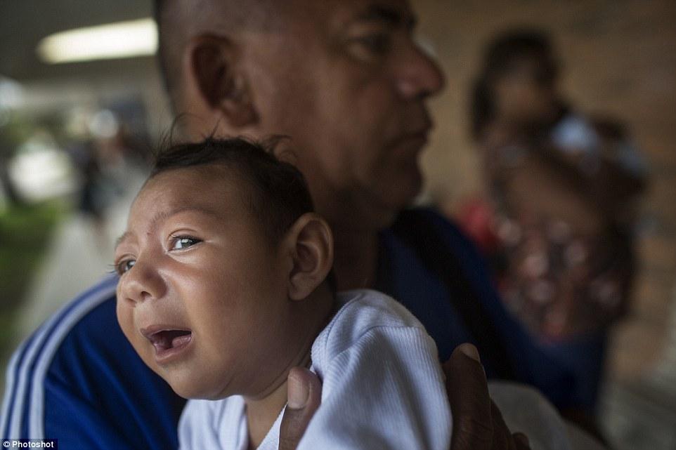 Chùm ảnh: Dịch bệnh Zika đầu nhỏ - nỗi khiếp sợ của toàn thế giới - Ảnh 25.