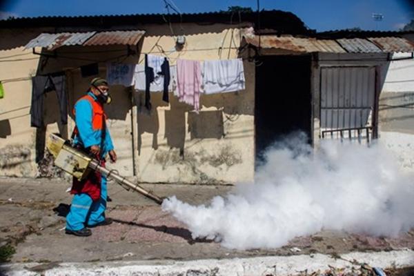 Chùm ảnh: Dịch bệnh Zika đầu nhỏ - nỗi khiếp sợ của toàn thế giới - Ảnh 15.