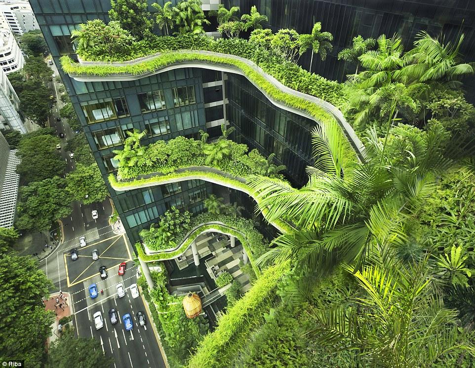 Ngắm nhìn 30 công trình đẹp nhất thế giới, trong đó có nhà trẻ xanh tại Việt Nam - Ảnh 3.