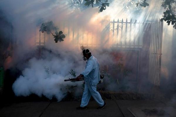Chùm ảnh: Dịch bệnh Zika đầu nhỏ - nỗi khiếp sợ của toàn thế giới - Ảnh 14.