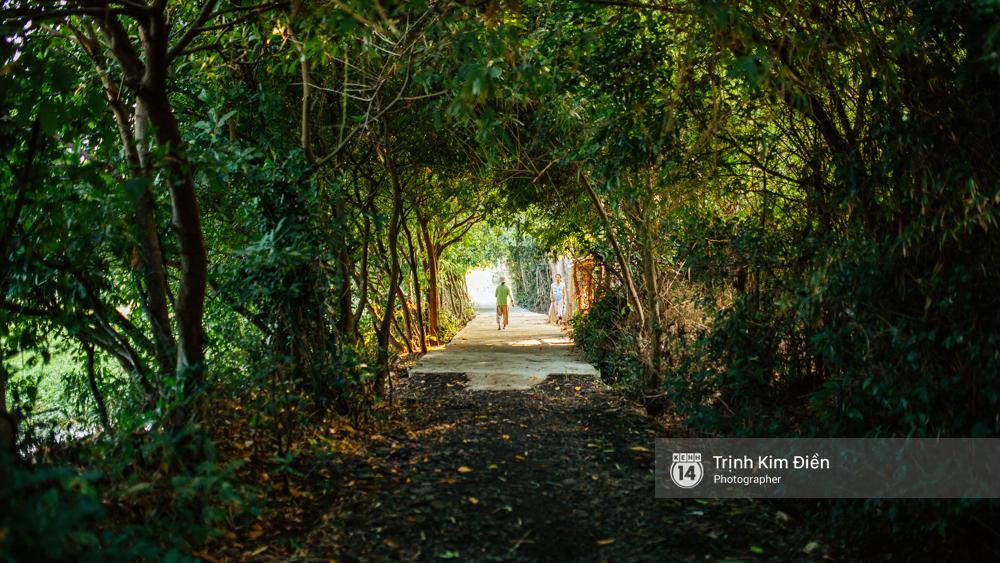 Hãy đến những nơi này để thấy Phú Yên còn đẹp hơn những gì bạn thấy trong hoa vàng cỏ xanh - Ảnh 27.