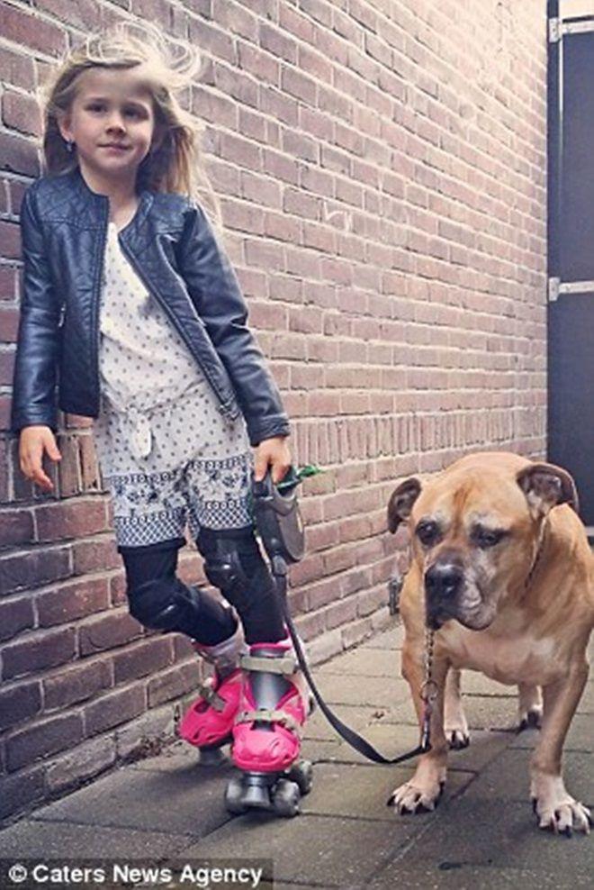 Giây phút vĩnh biệt đầy xúc động của cô bé 6 tuổi với chú chó mù và điếc - Ảnh 4.