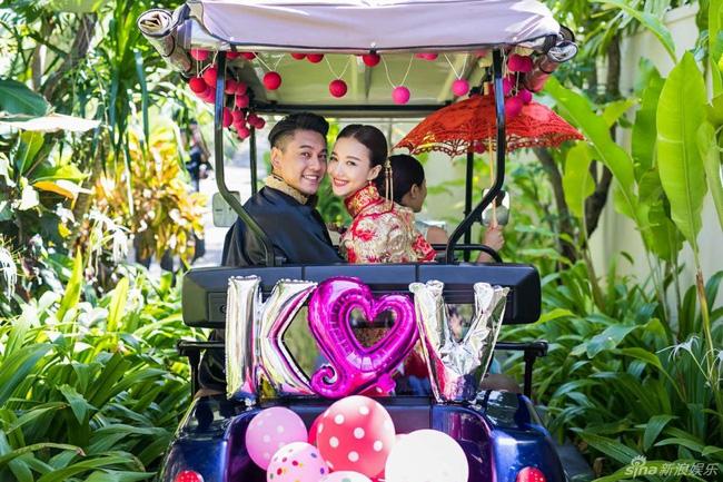 Làng giải trí Hoa ngữ 2016: Đám cưới chóng vánh, ngoại tình thả phanh - Ảnh 6.