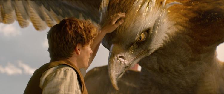 Fantastic Beasts and Where to Find Them – Chuyến tàu trở về với thế giới phù thủy đầy màu sắc - Ảnh 4.