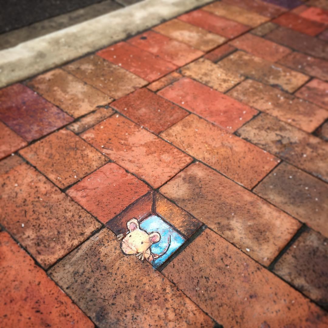 Phòng tranh nghệ thuật đường phố đầy sáng tạo của họa sĩ David Zinn - Ảnh 7.