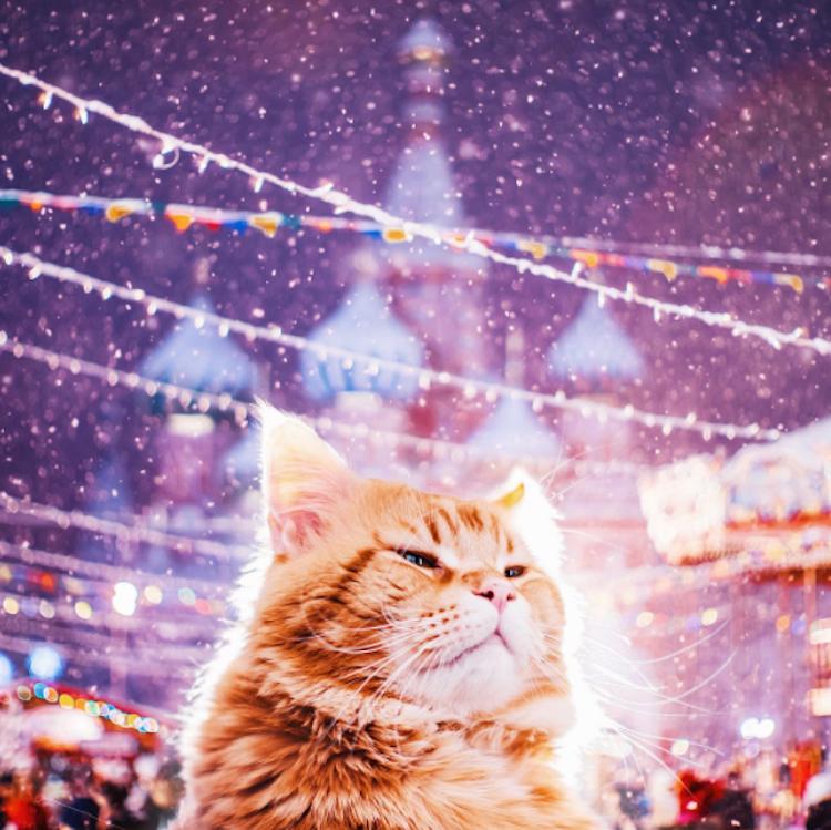 Ngỡ ngàng trước một Moscow mùa Giáng Sinh lung linh như truyện cổ tích - Ảnh 3.
