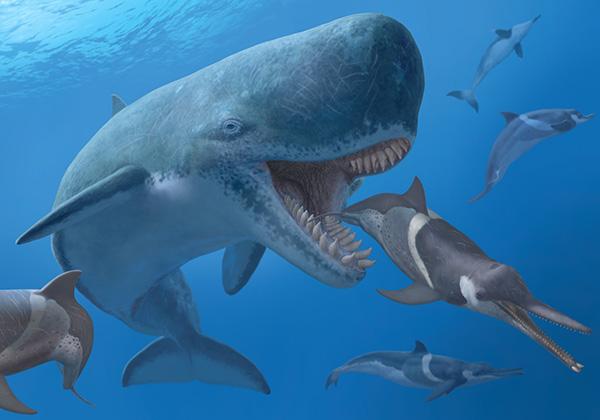Quái vật cổ đại có khả năng giết cả siêu cá mập Megalodon - Ảnh 1
