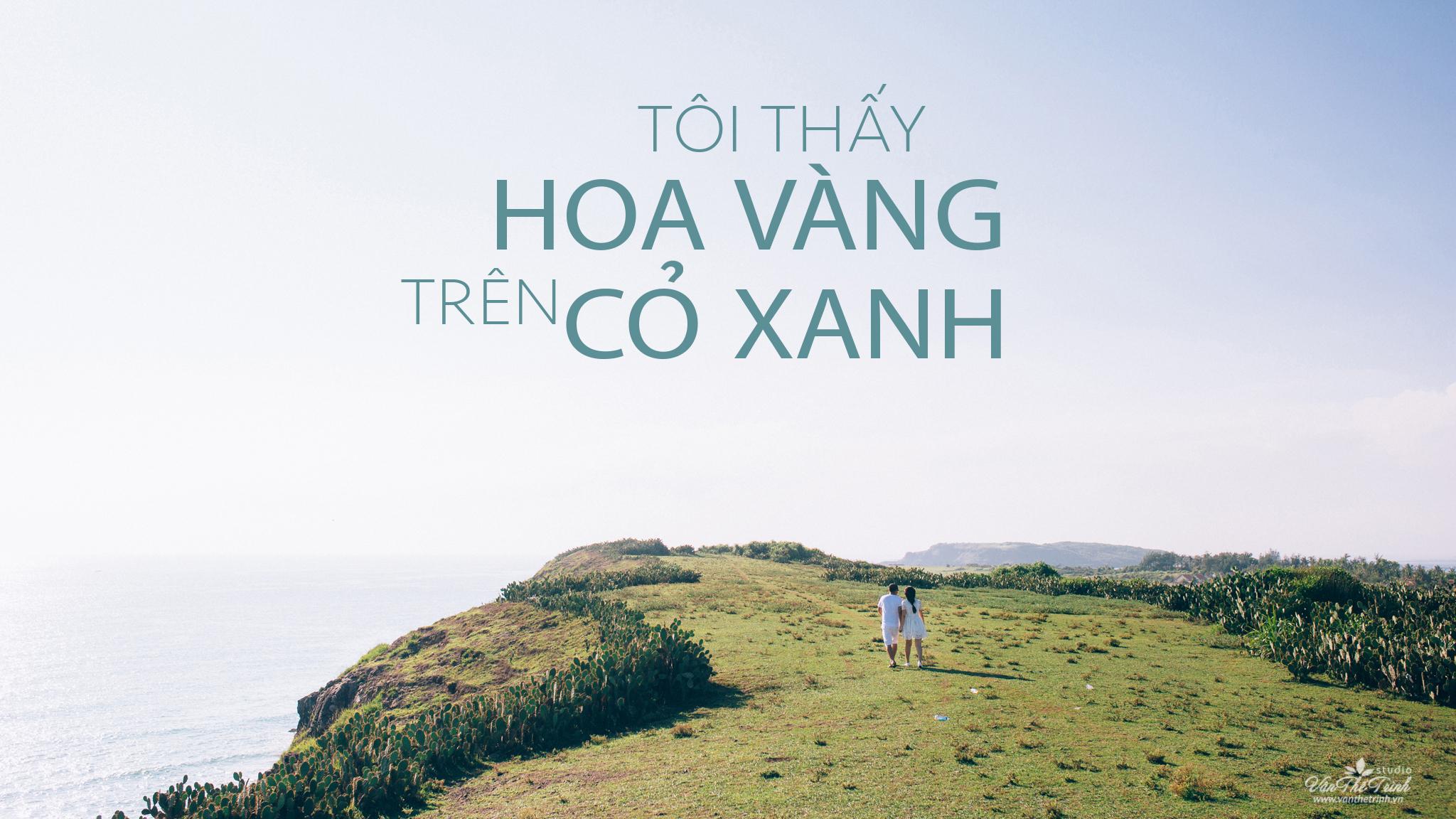 Hãy đến những nơi này để thấy Phú Yên còn đẹp hơn những gì bạn thấy trong hoa vàng cỏ xanh - Ảnh 23.