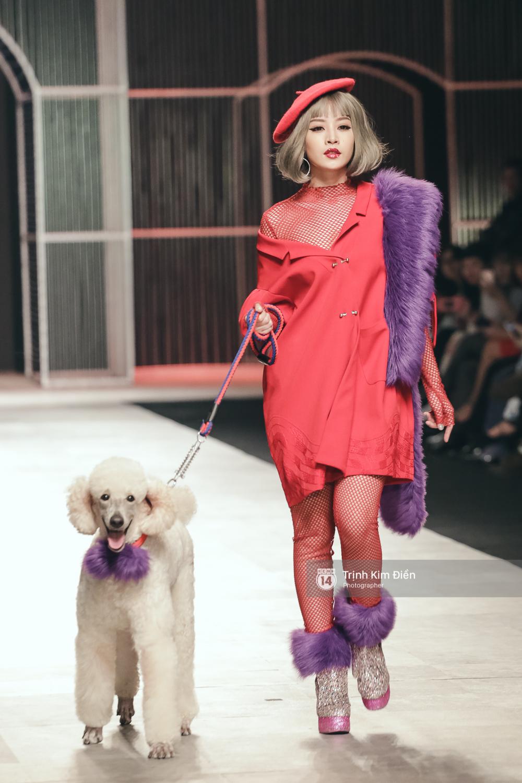 Chi Pu kiêu kì dắt cún trình diễn thời trang trên sàn diễn VIFW - Ảnh 3.