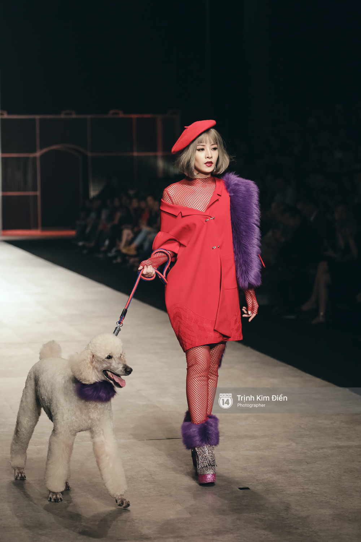 Chi Pu kiêu kì dắt cún trình diễn thời trang trên sàn diễn VIFW - Ảnh 5.