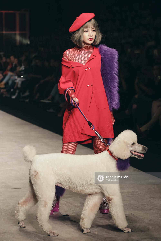 Chi Pu kiêu kì dắt cún trình diễn thời trang trên sàn diễn VIFW - Ảnh 6.