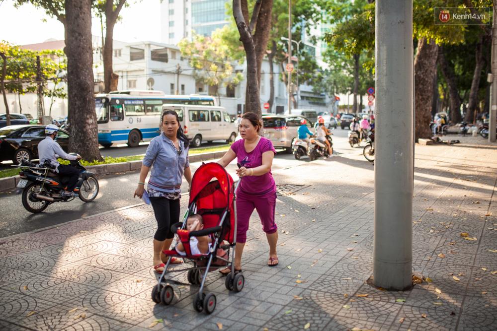 TPHCM: Ngắm nhìn hàng cây xanh trên đường Tôn Đức Thắng trước khi 300 cây sẽ bị chặt hạ - Ảnh 12.