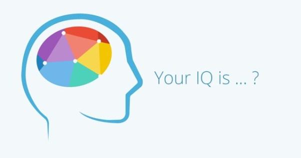 Có 8 loại trí thông minh, và ai cũng sở hữu ít nhất 2 loại - Ảnh 1.