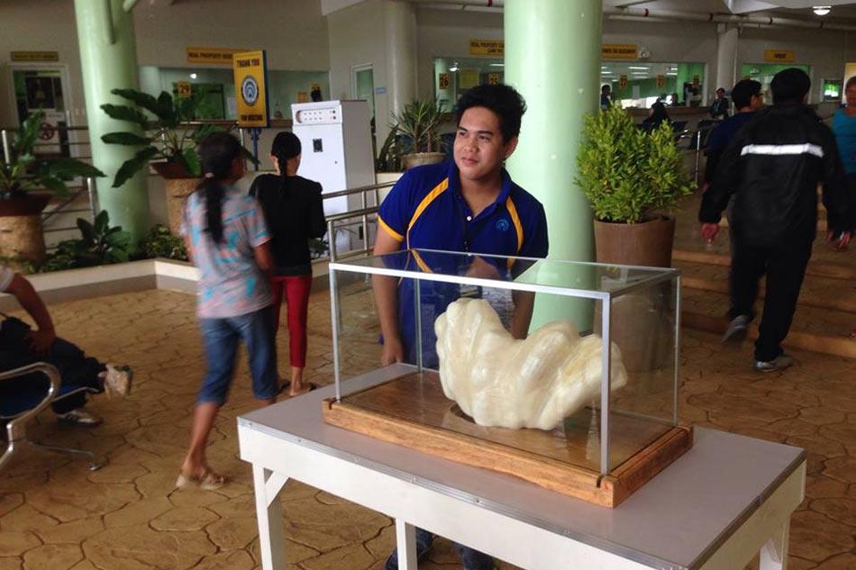 Ngư dân Philippines cất giữ viên ngọc trai trị giá hơn 2.200 tỷ đồng mà không hề hay biết - Ảnh 4.