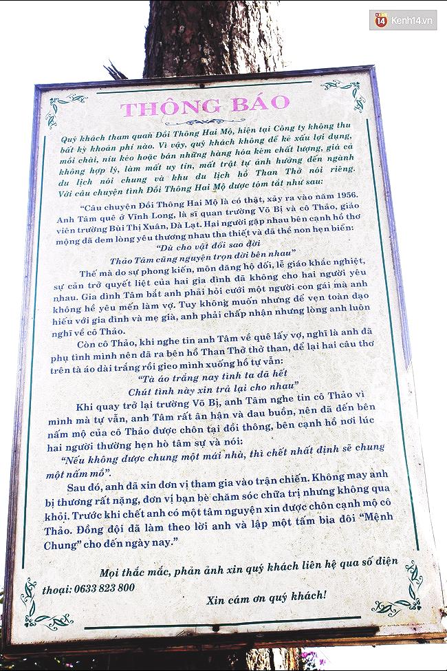 Phía sau đồi thông hai mộ ở Đà Lạt là một thiên tình sử đầy bi thương mà ít người biết đến - Ảnh 4.