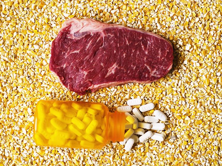 Câu chuyện phũ phàng về ngành chăn nuôi trong ác mộng nhờn kháng sinh - Ảnh 3.